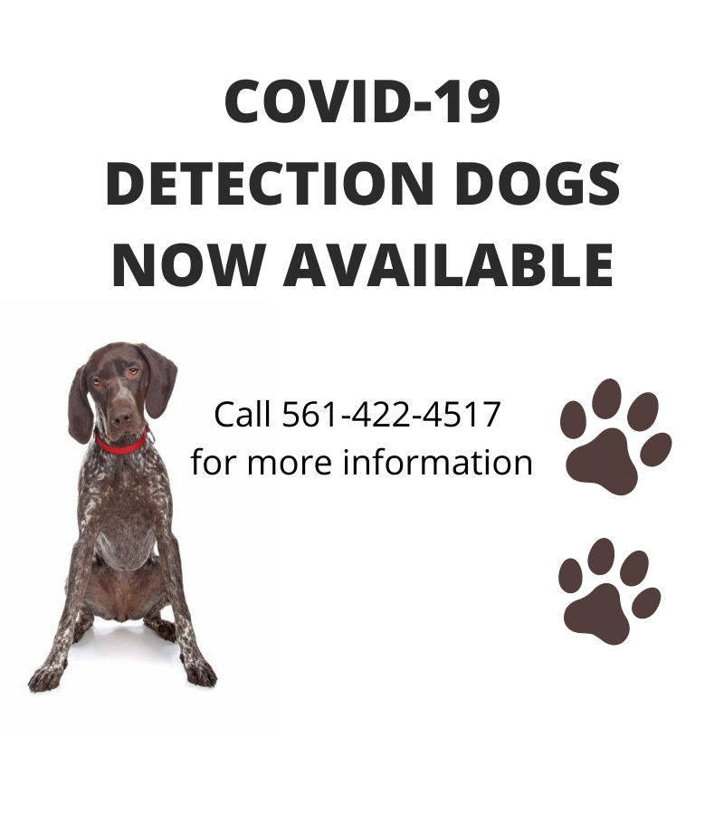 FEATURING COVID-19 DOGS