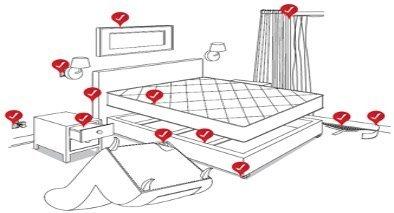 Bed Bug Detection